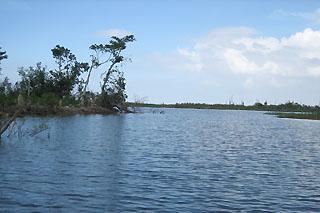 Lake Okeechobee Fl Dacrons Florida Travel Guide